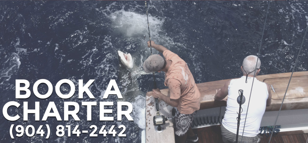Book a Fishing Charter - J-Hook Fishing Charters