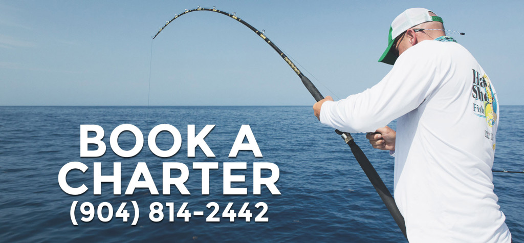 j-hook-fishing-charters-st-augustine-florida-book-a-trip-best-fishing